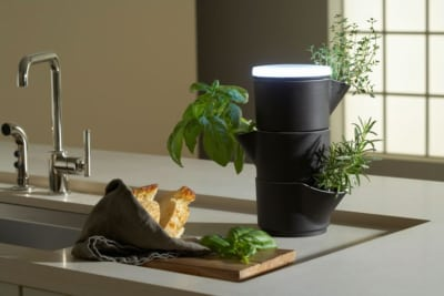 STAK Indoor Herb Garden